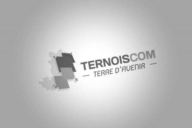 defaut-ternois-1